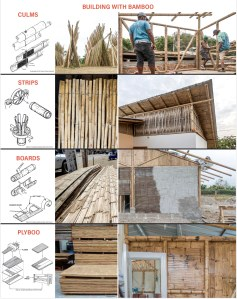 Intro to bamboo building